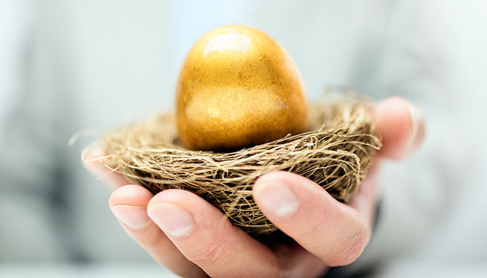 Will Your Nest Egg Last?